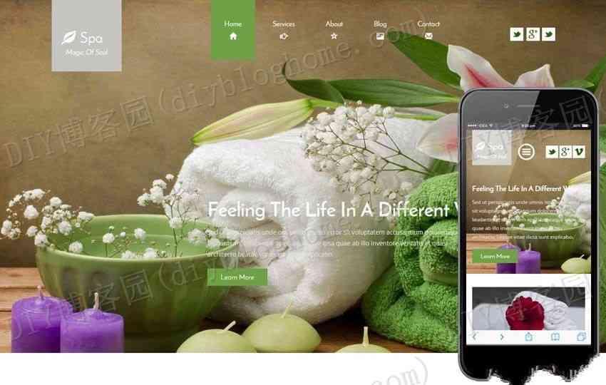 美容美食类spa网页模板纯HTML+CSS
