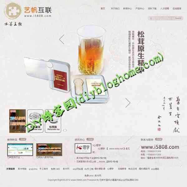 中国风水墨画风格企业网站ASP源码