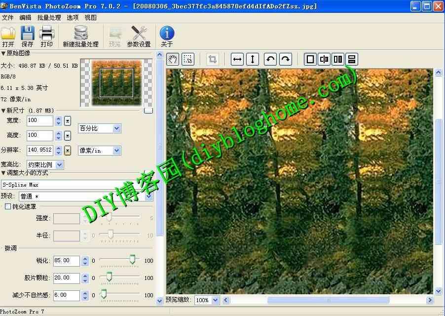 图片无损放大PhotoZoom Pro v7.0.2 单文件免安装专业版